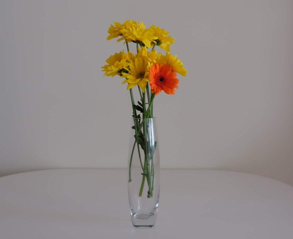 honesty creates simplicity and minimalist life